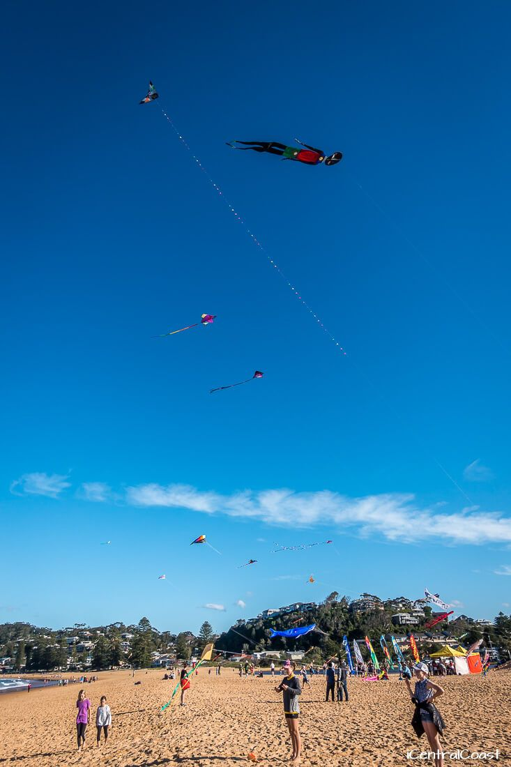 Flying kites at North Avoca Beach