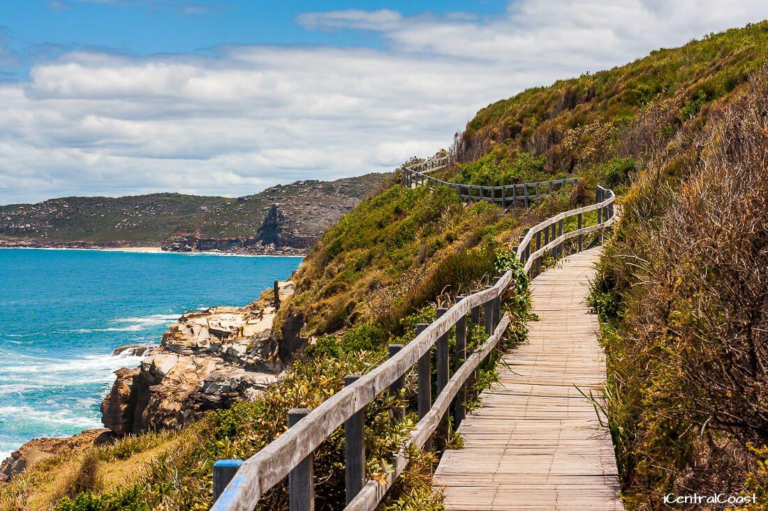 The Coastal Walk Bouddi National Park