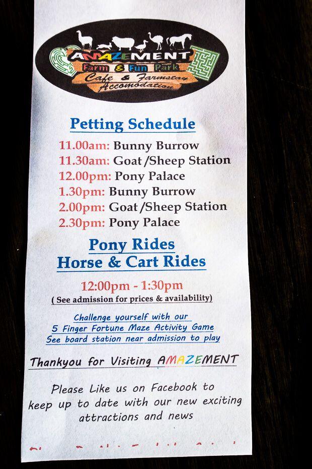Petting schedule