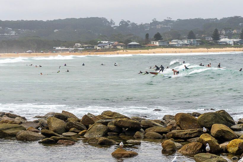 Surfing Avoca Point