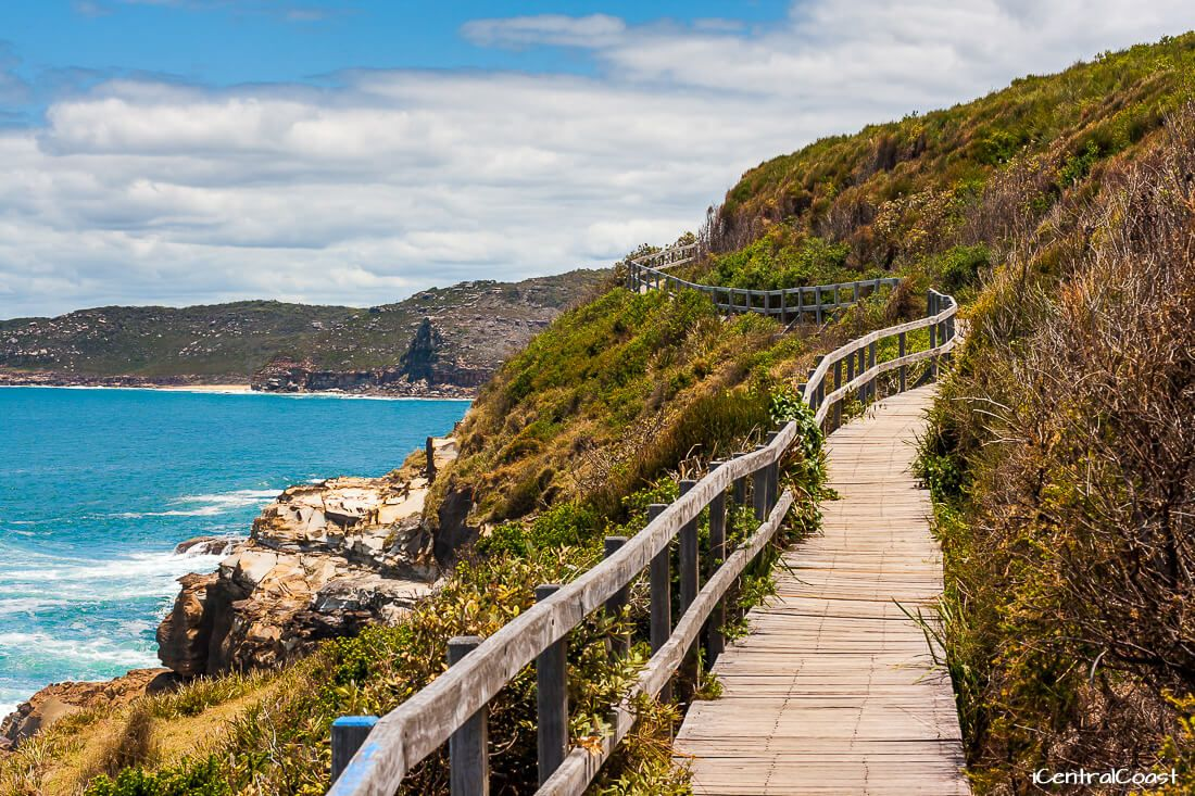 The Coastal Walk Bouddi National Park