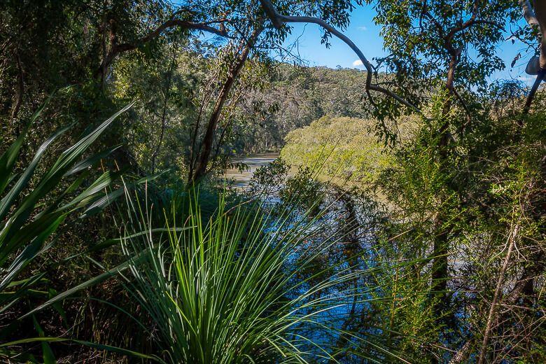 View of Mooney Mooney Creek from Mooney Mooney nature walk