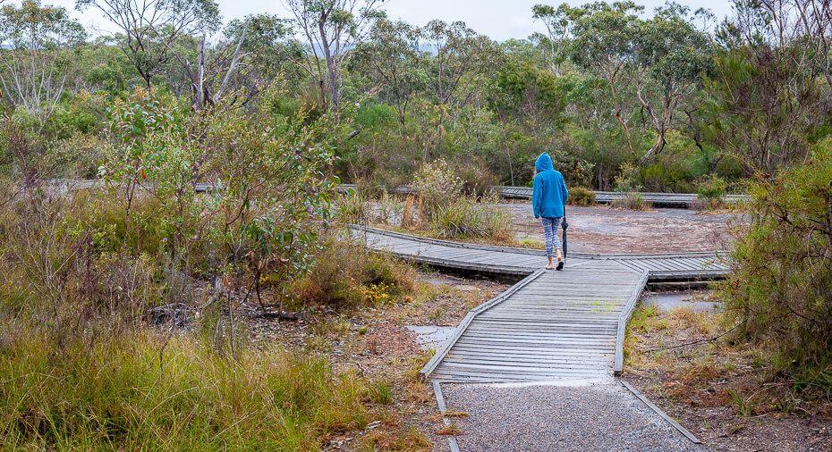 Boardwalk surrounds the sandstone rock surface with Bulgandry Aboriginal art.