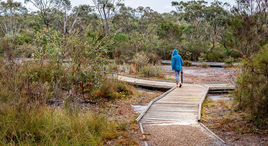 Boardwalk surrounding the Aboriginal engraving rock.