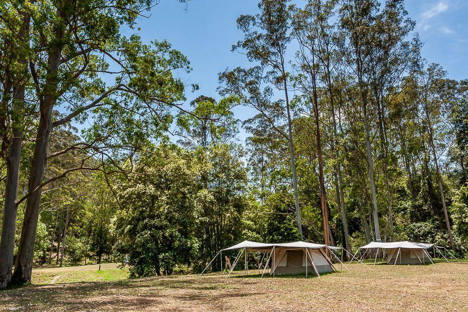 Glenworth Valley Outdoor Adventures Campground