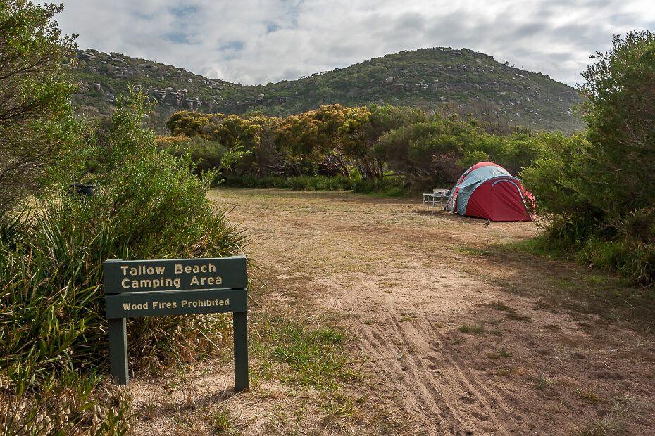 Tallow Beach Camping Ground