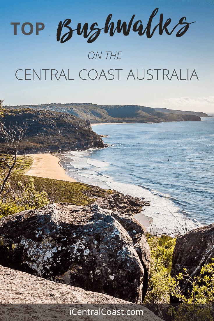 Looking to walk in a national park on the Central Coast Australia? Here you'll find beautiful short day walks for everyone.