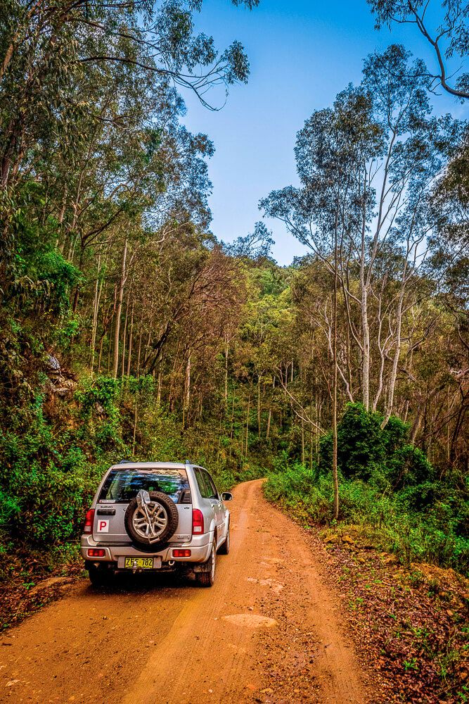 Four wheel driving in Watagans
