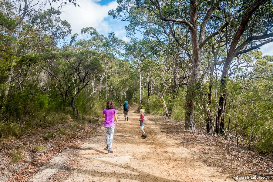 Pearl Beach to Warrah Lookout trail