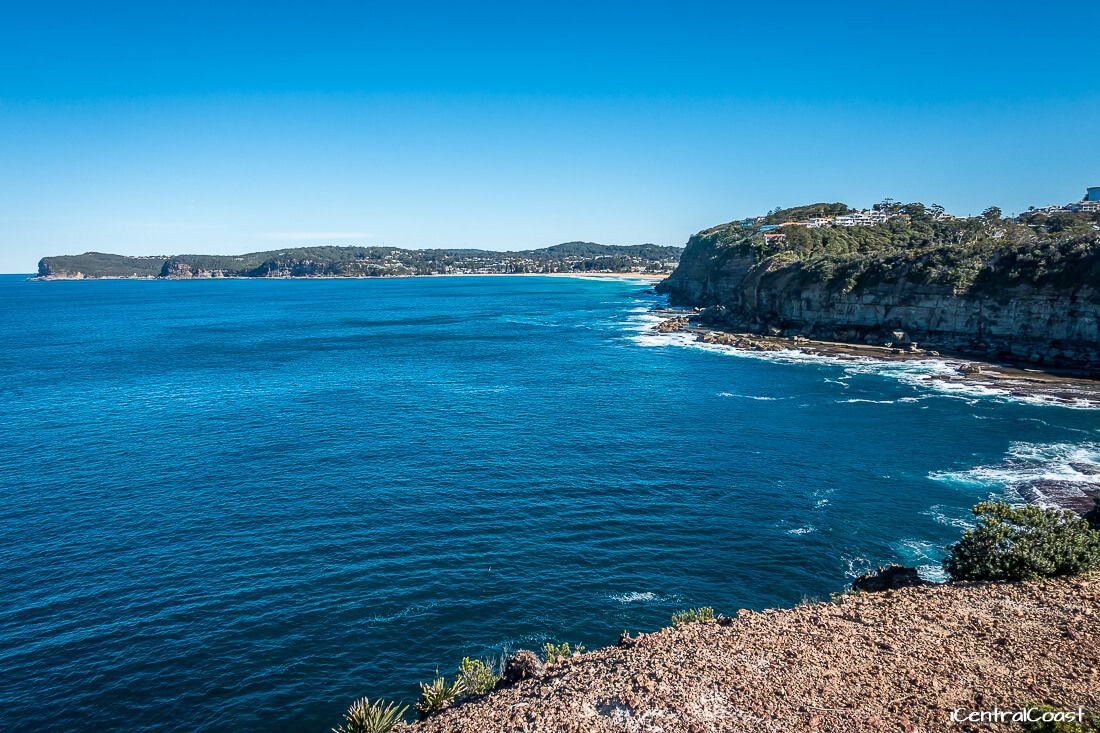 Looking at Avoca Beach from the top of the Skillion