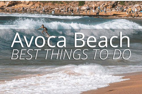 Best things to do in Avoca Beach