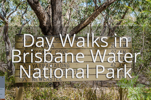 Brisbane Water National Park day walks