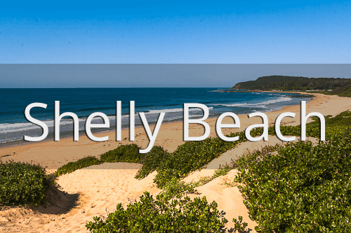 Discover Shelly Beach