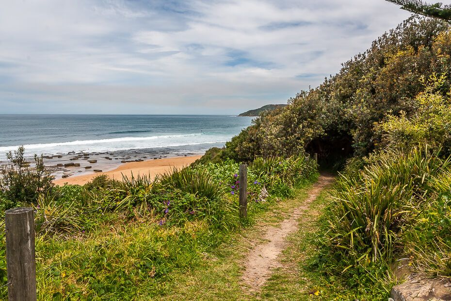 pathway leading to beach