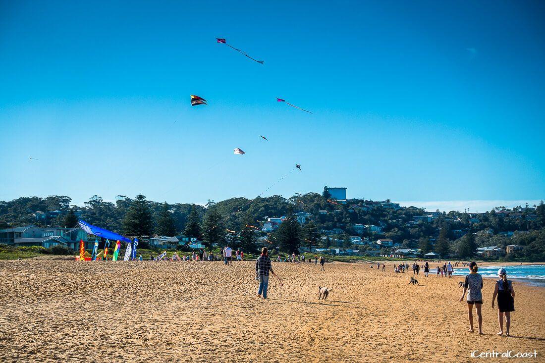 Flying kites at North Avoca Beach