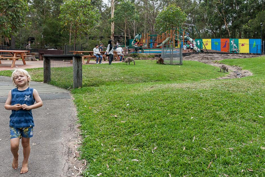 playground at the back
