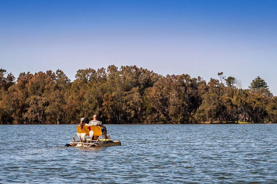 Pedal boat on Avoca Lake
