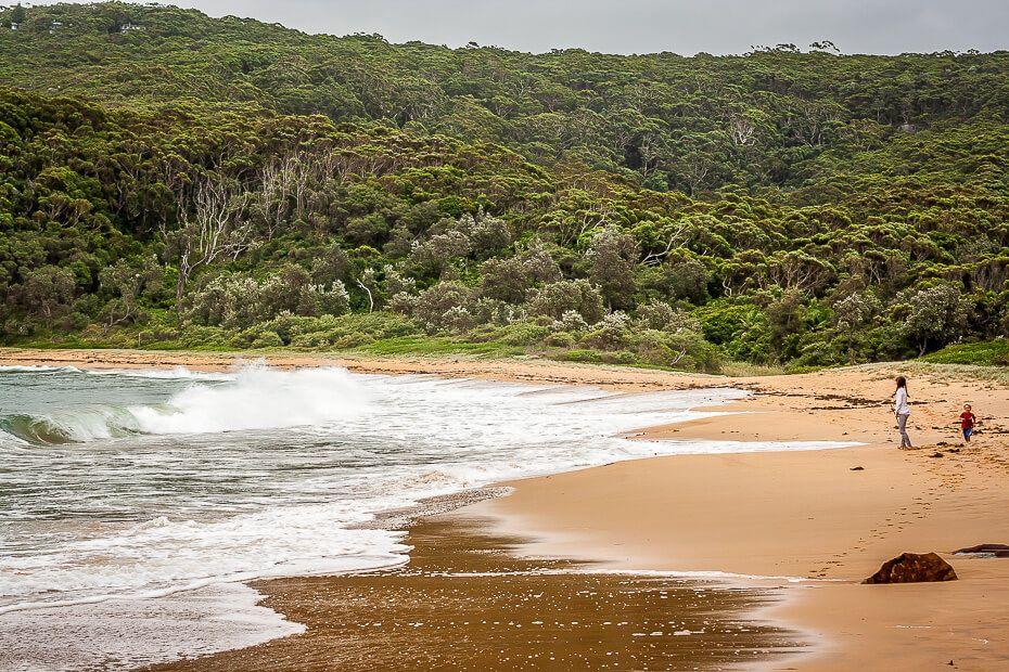 Maitland Bay