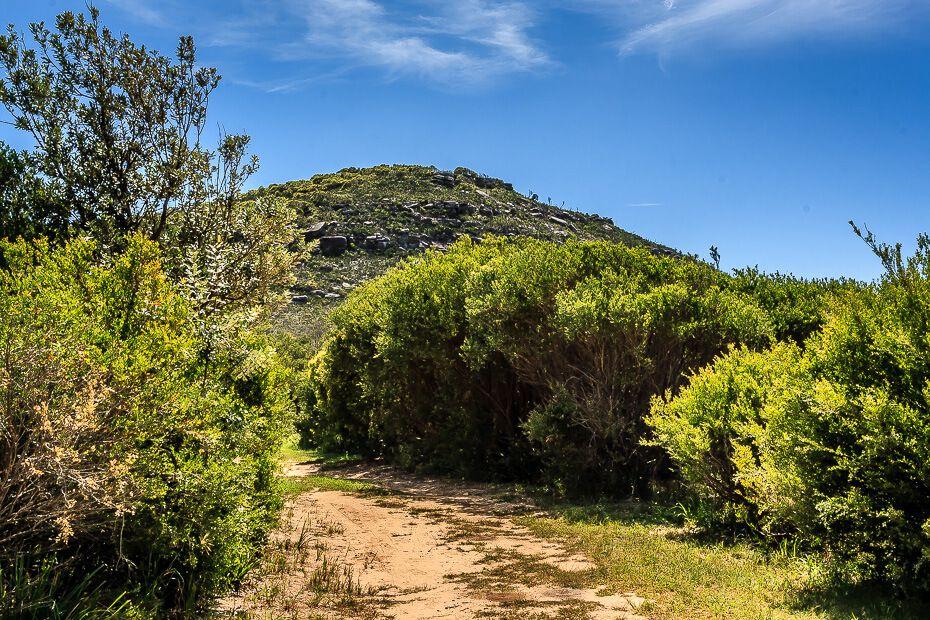 Tallow Beach Trail