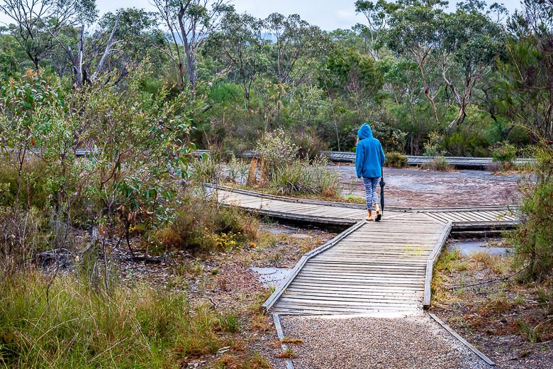 Boardwalk surrounds the sandstone rock surface with Bulgandry Aboriginal art.