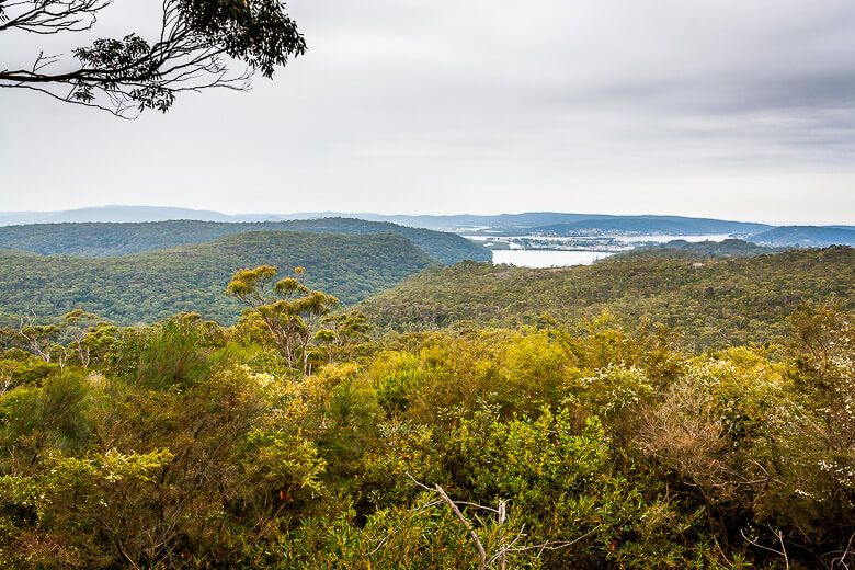 View of Brisbane Water and bush from Staples Lookout.