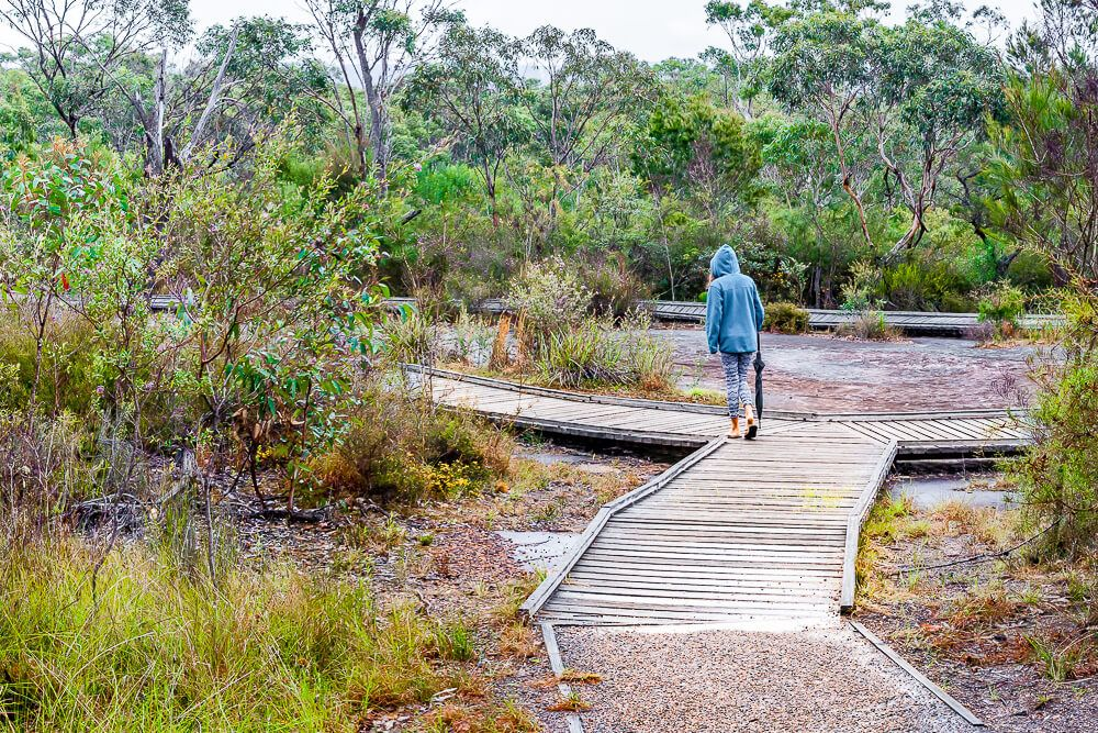 Boardwalk surrounding Bulgandry Aboriginal engraving site.