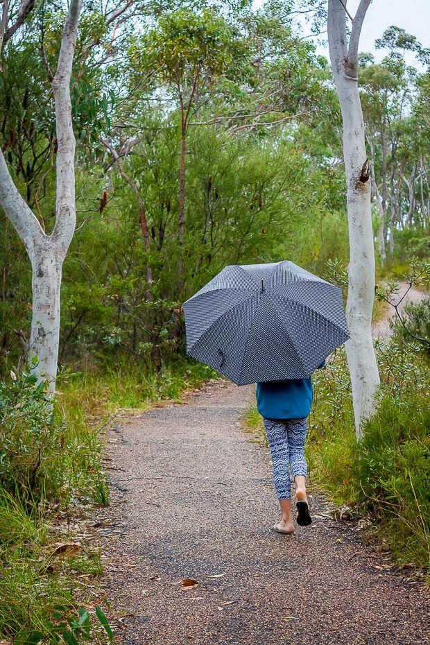 Bulgandry Aboriginal art site footpath