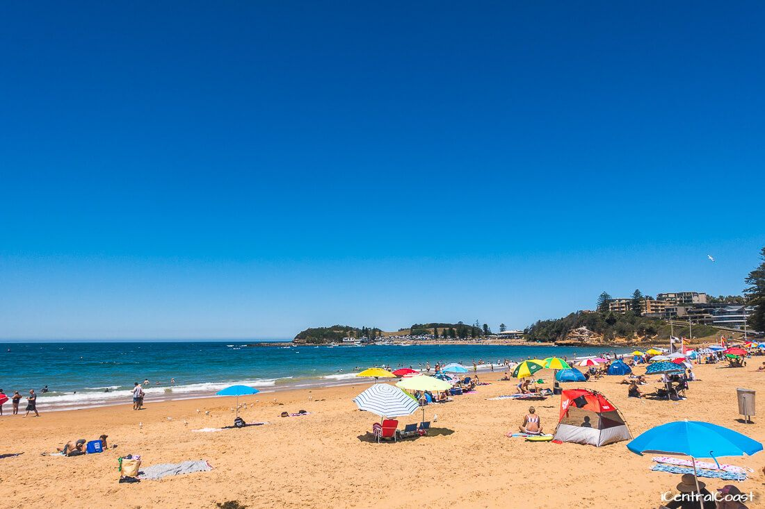 Terrigal Beach in summer