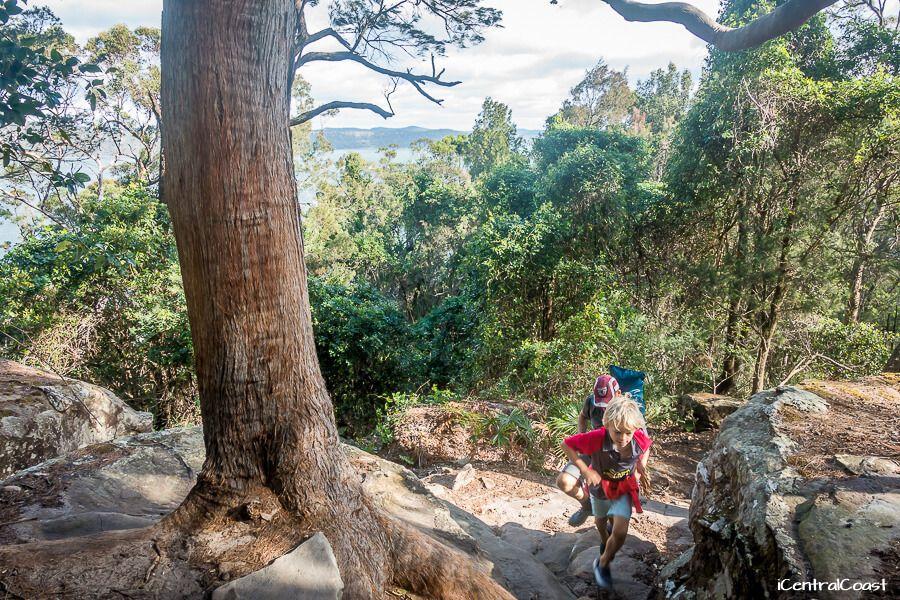 Patonga walking track