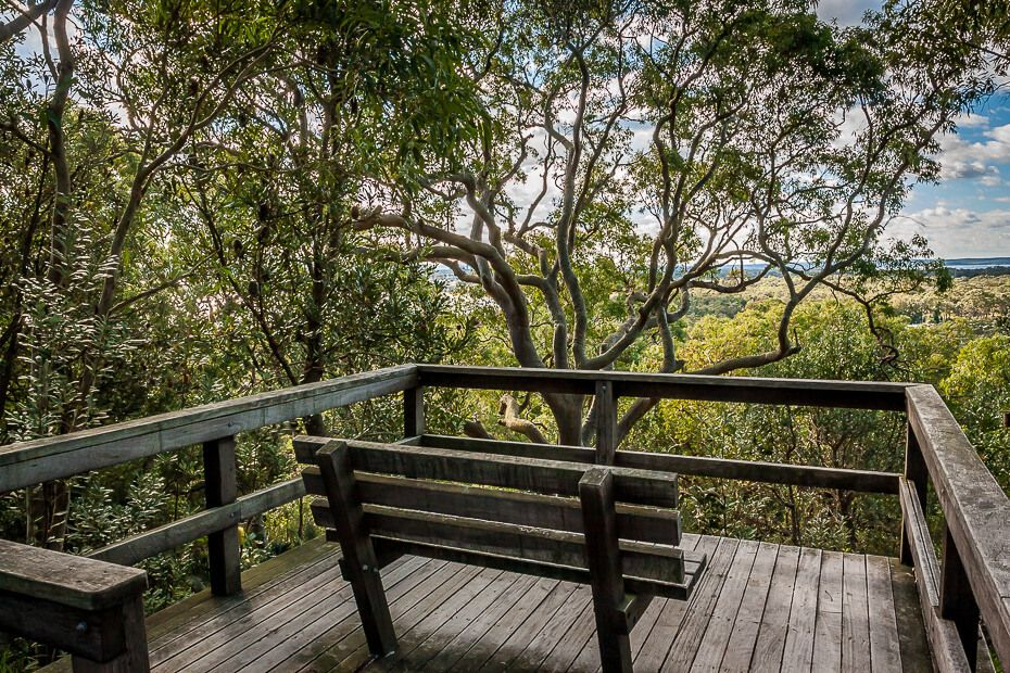 Seat on the wooden platform along the Red Gum trail