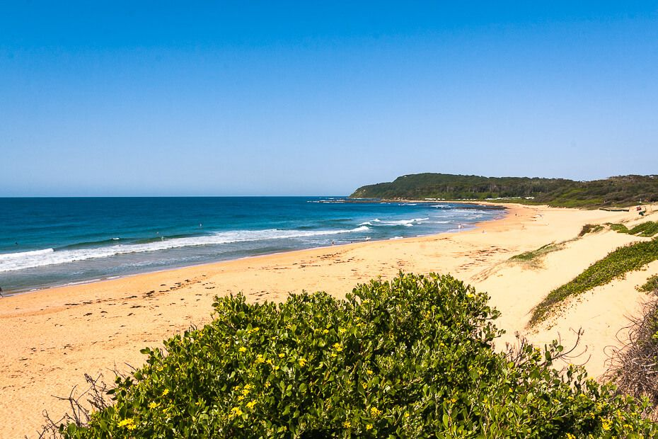 Shelly Beach NSW