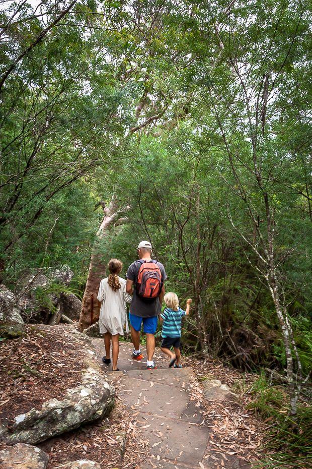 Somersby Falls walk