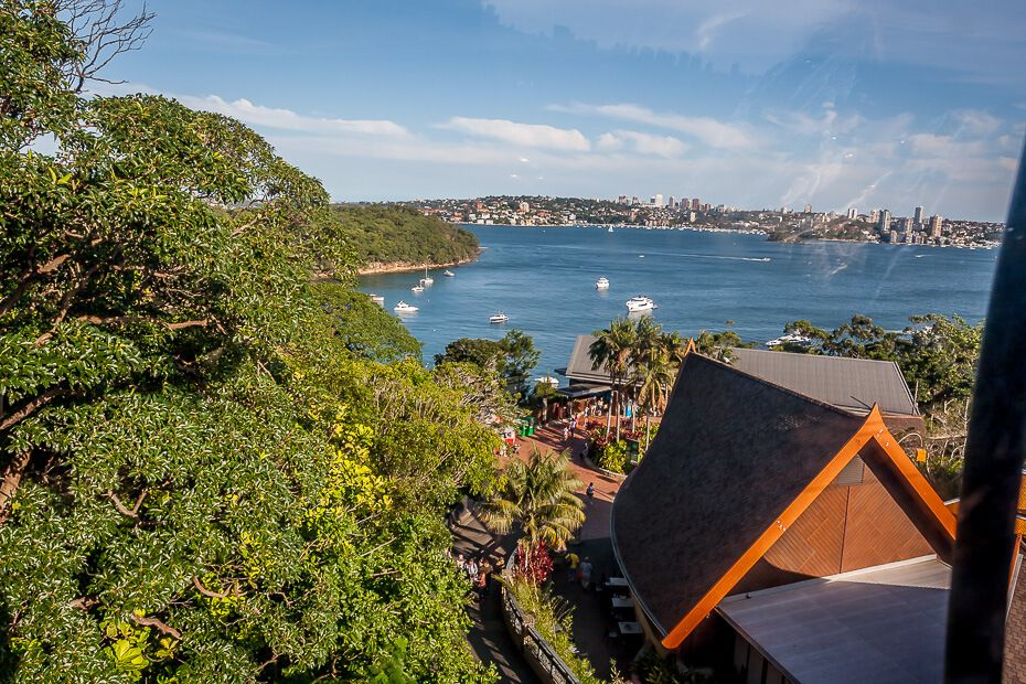 View of Sydney from the Sky Safari at Taronga Zoo