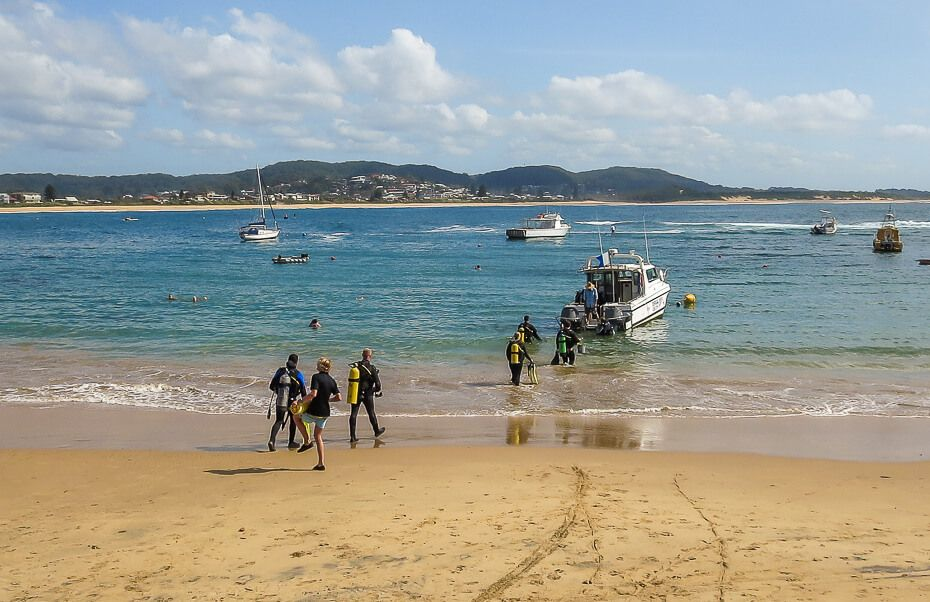 diving in terrigal