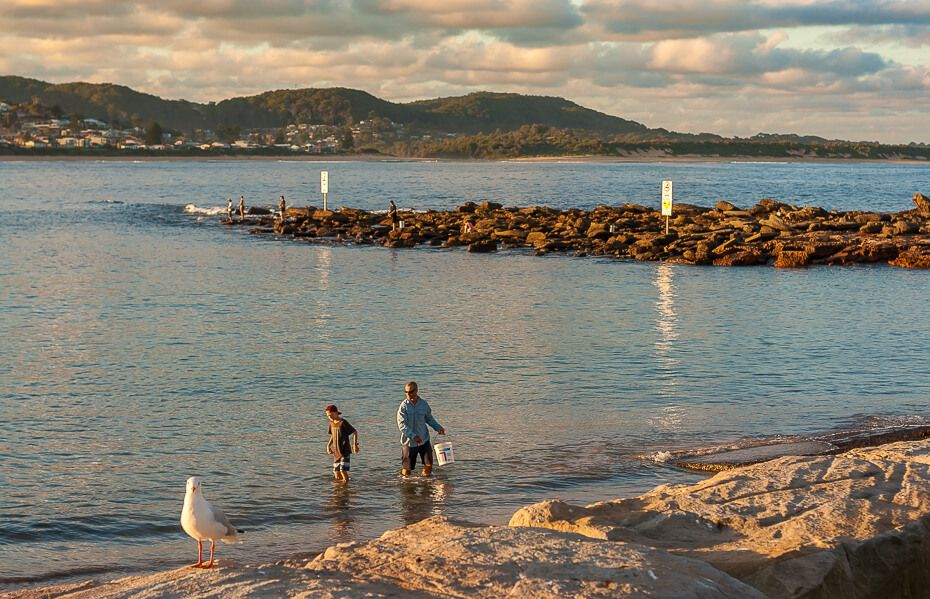 Terrigal Haven fishing