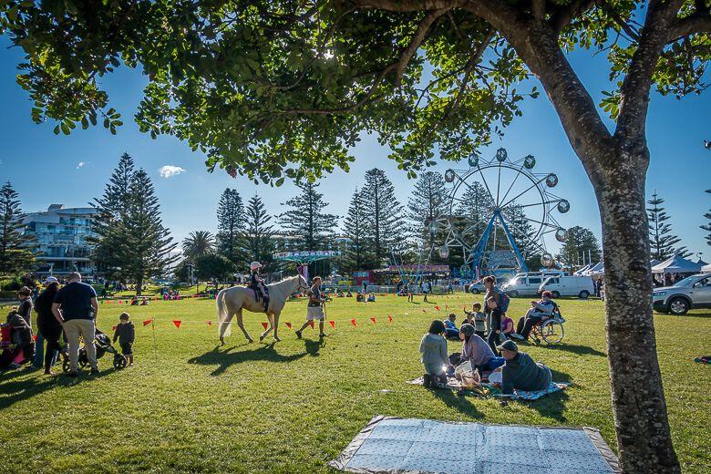 Memorial Park & pony rides