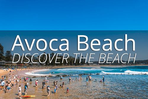 Discover the beach at Avoca Beach