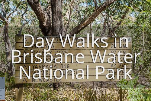 Brisbane Water National Park day walks