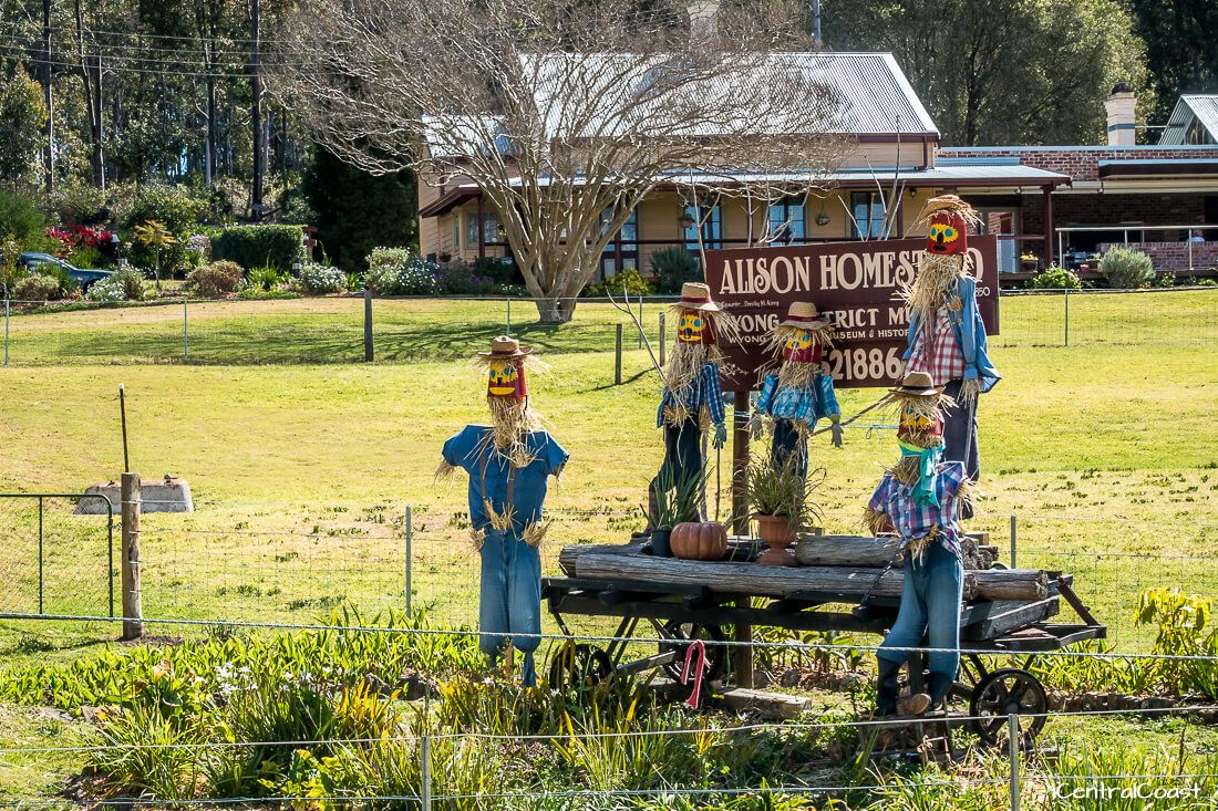 Scarecrows on the side of the road at Yarramalong