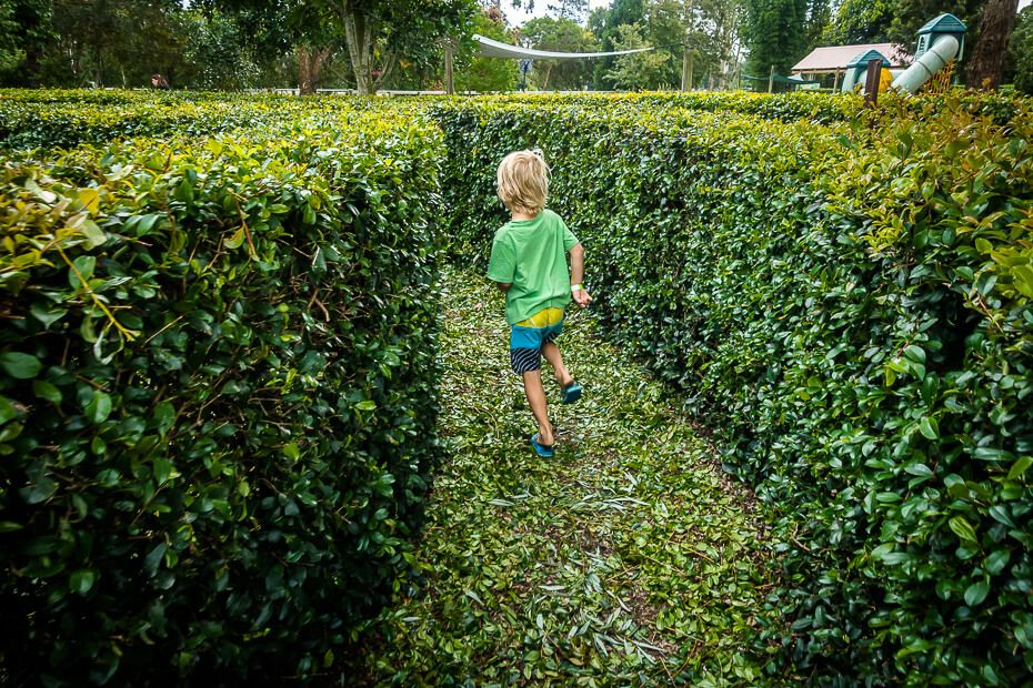 Running through the maze at Amazement Farm & Fun Park